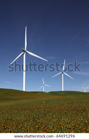 Stark white power generating wind turbines behind flowered green pasture and blue skies.