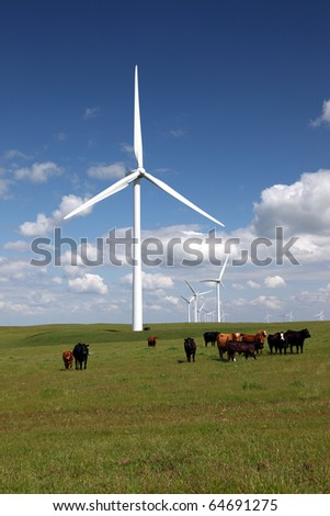 Stark white power generating wind turbines behind green cattle pasture, herd of cattle, white clouds, and blue skies.