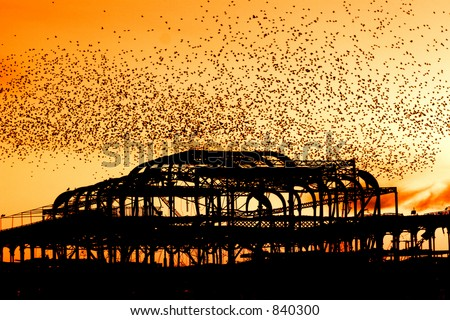 Starlings over the decayed West Pier at Brighton, Sussex, England - stock photo