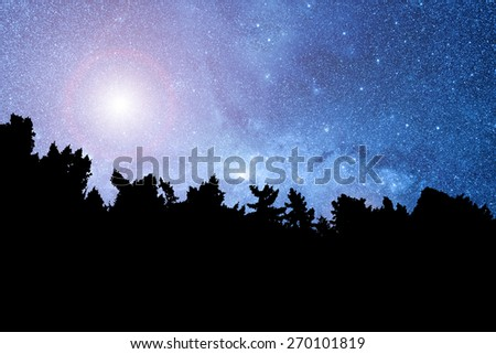 Starry landscape. Stars are digital illustration. - stock photo