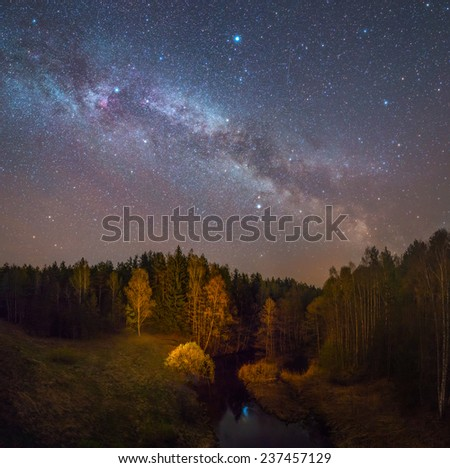 Starry night landscape - stock photo