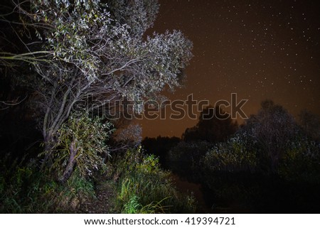 starry night, the stars over the lake, green grass, trees illuminated by a flashlight, the Milky Way, reflection of trees in water, trees above the water, the stars in the night sky, art photography  - stock photo