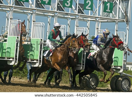 Start horse race for the prize Evtushenko