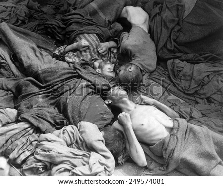 Starved bodies of prisoners in a freight car at Dachau on April 30, 1945. U.S. troops found fifty such cars with 2,500 bodies who had died enroute to Dachau from concentration camps. - stock photo