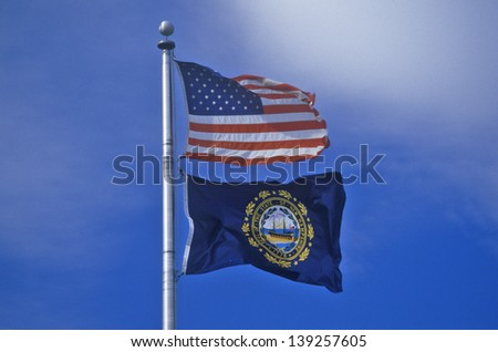 State Flag of New Hampshire - stock photo