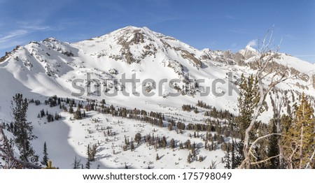 Static Peak in winter.  Taken from the slopes of Albright peak in Grand Teton National Park. - stock photo
