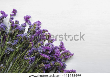 statice purple flower on wooden floor with white background.