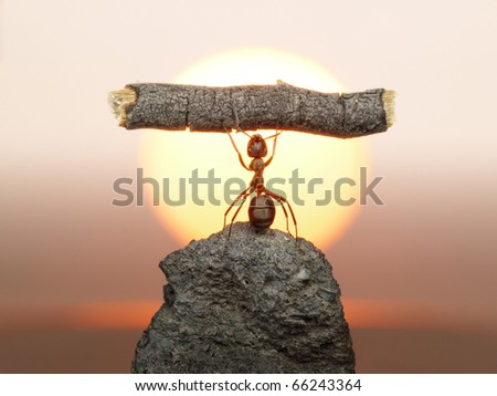 Statue of Labour, ants civilization living 150 million years because of working - stock photo