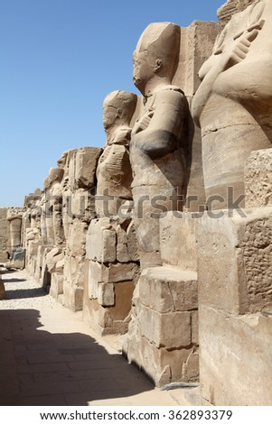 Statues of Sphinxes being in the same row