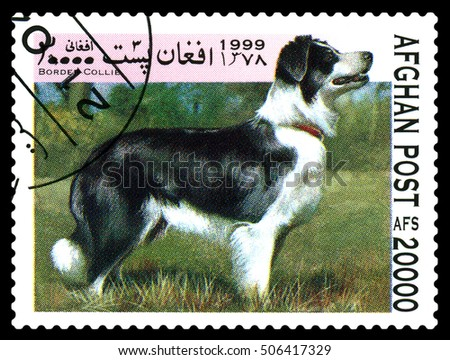 STAVROPOL, RUSSIA - October 27, 2016: A stamp printed in Afganistan, shows  Border collie, Zoo Animals, circa 1999
