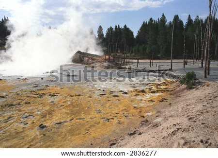steam and yellow mud at Yellowstone NP