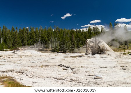 Steam at Giant Geyser, Yellowstone National Park, Wyoming, USA - stock photo