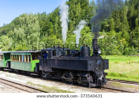 steam train, Lunz am See, Lower Austria, Austria - stock photo