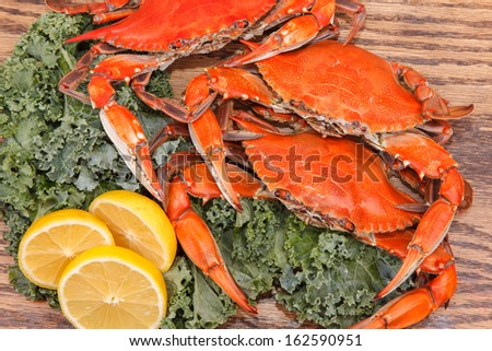 Steamed Blue Crabs, one of the symbols of Maryland State and Ocean City, MD, with lemon slices and garnished with kale on a wooden table - stock photo