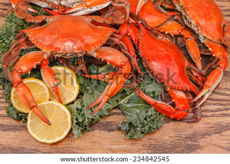 Steamed Blue Crabs with lemon slices and garnished with kale on a wooden table  - stock photo