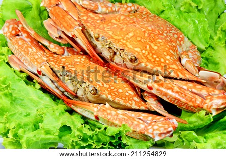 Steamed Crab. - stock photo
