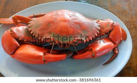 steamed crab - stock photo
