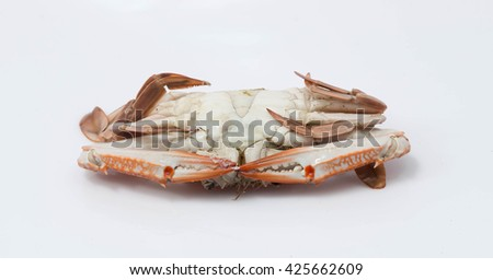 Steamed crabs on a white background. - stock photo