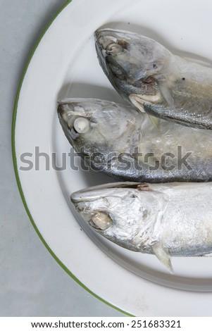 Steamed Mackerel fish - stock photo