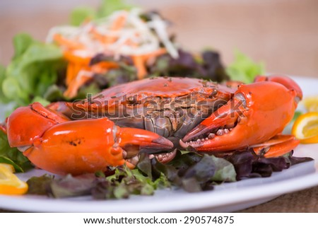 steamed red crab on the plate with vegetables. - stock photo