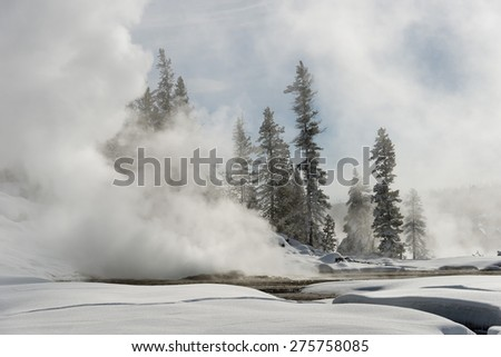 Steaming geyser in a snow-covered landscape. Yellowstone National Park. - stock photo