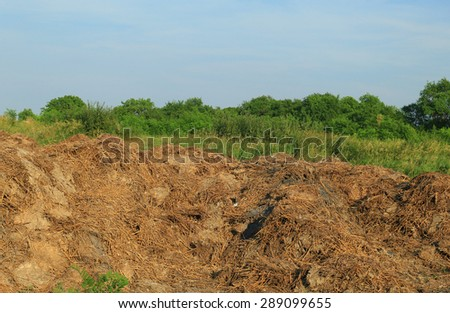 Steaming pile of manure on farm field - stock photo