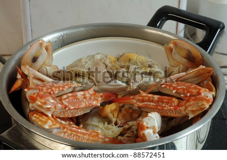 Steaming red crabs in a kitchen pot - stock photo