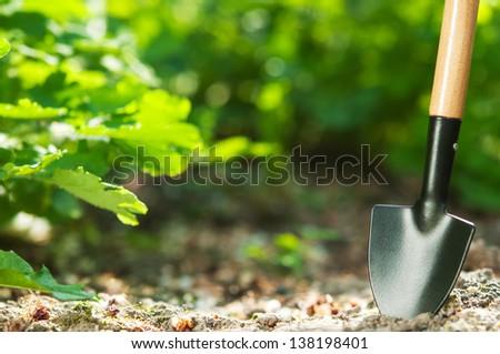 Steel shovel on garden ground - stock photo