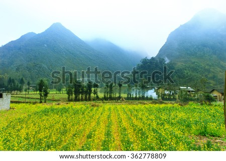 steep path leading to the house of aboriginal Hagiang, Vietnam - stock photo