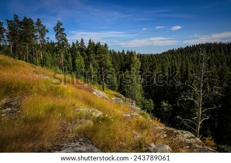 steep slope of the hill over the forest - stock photo