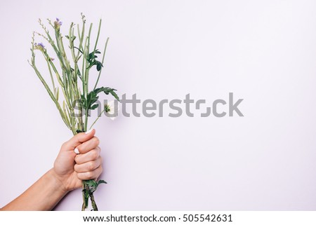 Stems of flowers in female hand with white manicure on a light background, space for text