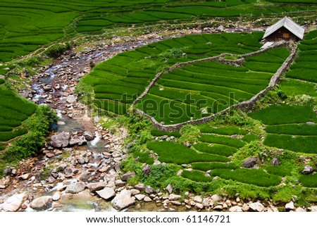 Stepped rice patty terraces in the north Vietnamese city of Sapa - stock photo