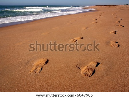 Stepping on the beach