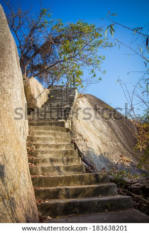 steps in the rocks and tree with stones - stock photo