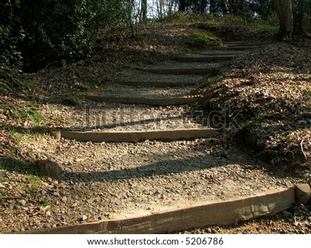 Steps in the Woods - stock photo