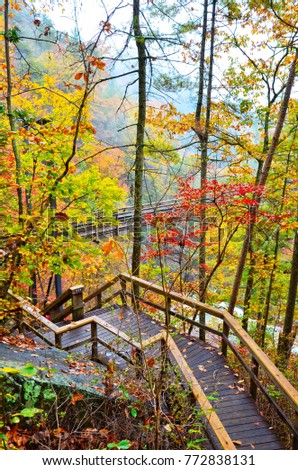 Steps to a Suspended Bridge in Tallulah Gorge