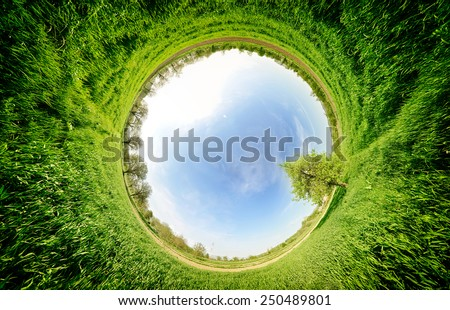 Stereographic panoramic projection of a green field with trees