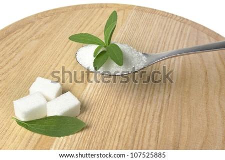 stevia rebaudiana herb - stock photo