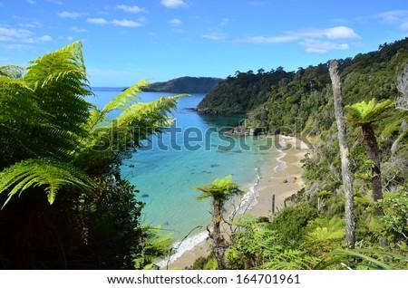 Stewart Island, New Zealand - stock photo