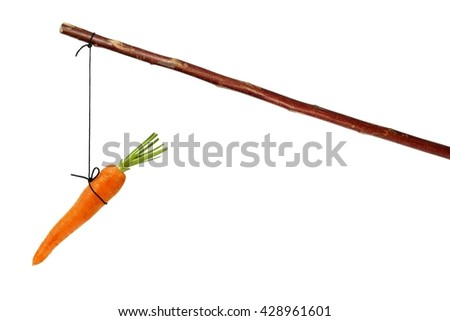 Stick with carrot on string isolated on white - stock photo