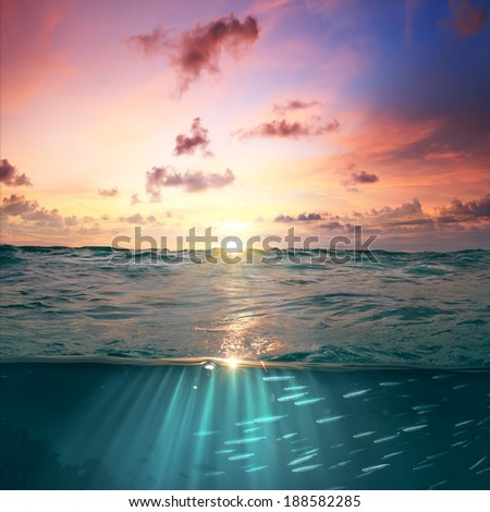 still calm sea water surface with beautiful cloudy sky and bright underwater world full of fish discovered  - stock photo
