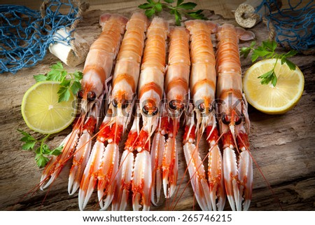 Still crayfish with network - stock photo