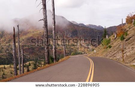 Still Damaged Landscape Blast Zone Mt St Helen's Volcano - stock photo
