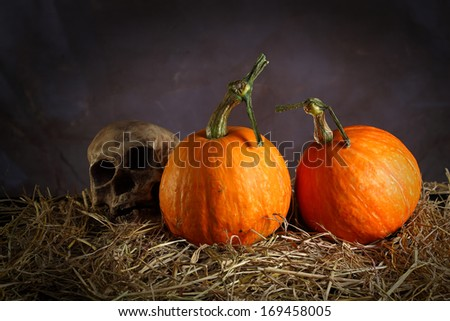 Still life art photography on raw fancy pumpkins with skull  - stock photo