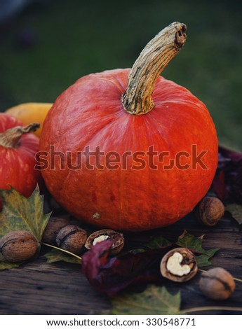 Still life concept - autumn fruits: pumpkins and walnuts. Selective focus.  - stock photo