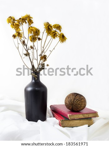 Still life dry flowers in a vase. - stock photo
