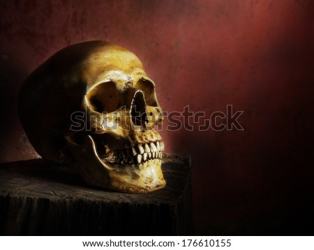 Still life fine art photography on human skeleton on wood log and red background - stock photo