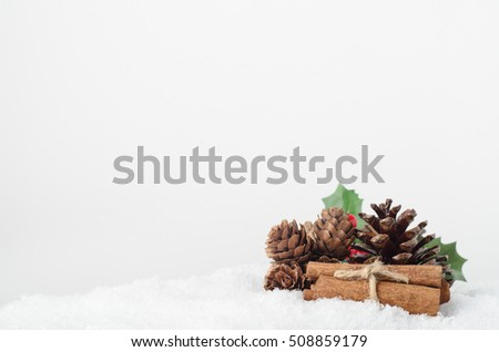 Still life grouping of pine cones; holly leaves, berries and cinnamon stick bundle on white artificial snow, bordering lower frame with copy space above and left.