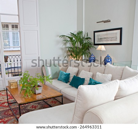Still life home interior of elegant family living room with white sofa and quality carpet, with family pictures and plants, house living indoors. Aspirational luxurious lifestyle and living interior. - stock photo