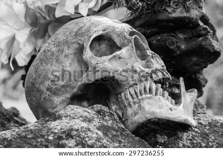 Still life, human skull on the rock, Black and white style